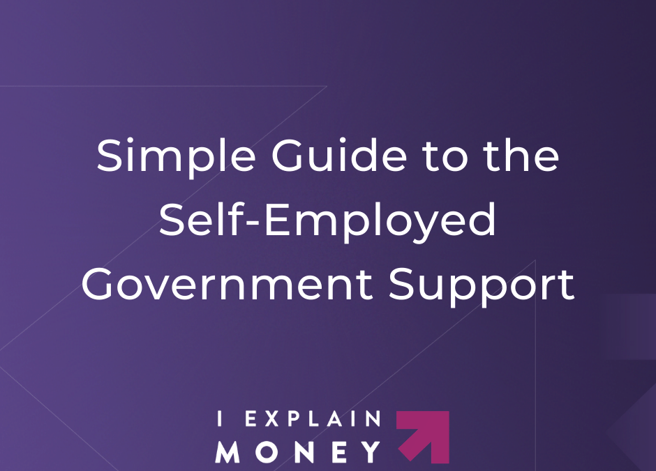Self-Employed Government Support